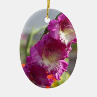 Garden gladiolus (Gladiolus x hortulanus) Ceramic Ornament