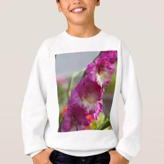 Garden gladiolus (Gladiolus x hortulanus) Sweatshirt