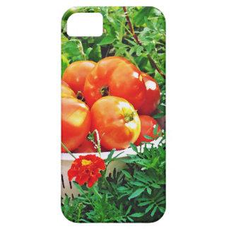 Garden Goodies iPhone 5 Cover