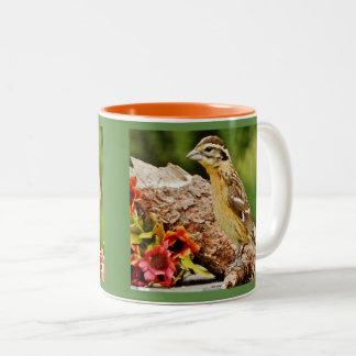 Garden Grosbeak Two-Tone Coffee Mug
