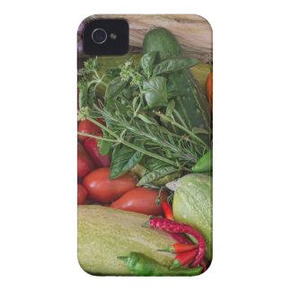 Garden Medley iPhone 4 Case