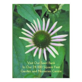 Garden / Nurseries Seed Flowers Flyer