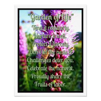 """Garden of Life"" Liatris Bloom Bee Rocky Mountains Art Photo"