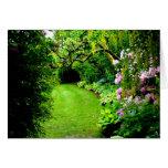 Garden Path Cards