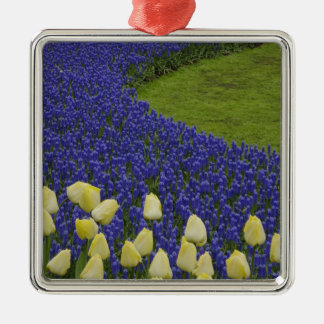 Garden pattern of Grape Hyacinth flowers and 2 Silver-Colored Square Decoration