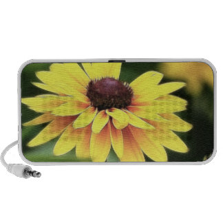 Garden Perfection - Black Eyed Susan iPod Speakers