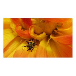 Garden Pest Control Business Card Templates