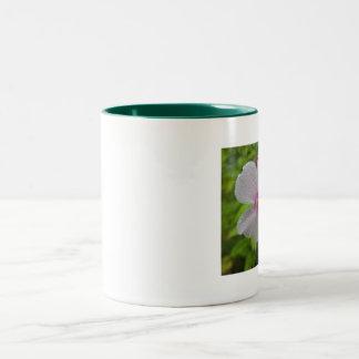 Garden Phlox With Morning Dew. Two-Tone Mug