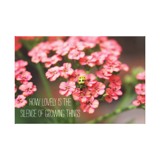 Garden Photography Yellow Bug Pink Flowers Quote Gallery Wrapped Canvas