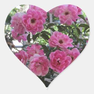 Garden Pink Roses Sticker