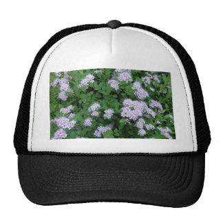 Garden Plant Mesh Hats