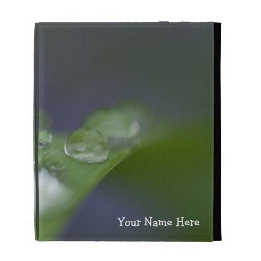 Garden Raindrops; Customizable iPad Case