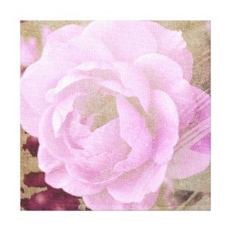 Garden Rose Canvas Prints