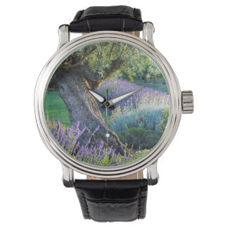 Garden scenic with flowers, France Watch