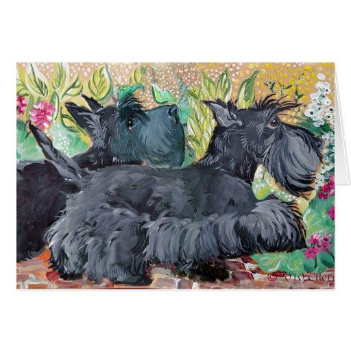 Garden Scottish Terriers Greeting Card