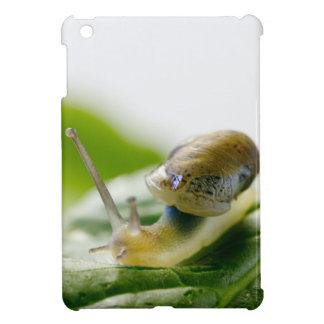 Garden snail on radish, California Cover For The iPad Mini