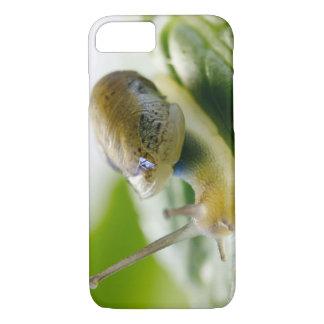 Garden snail on radish, California iPhone 7 Case