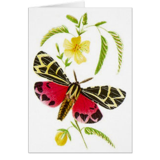 Garden Tiger Moth & Floral Design! GARDEN CARD