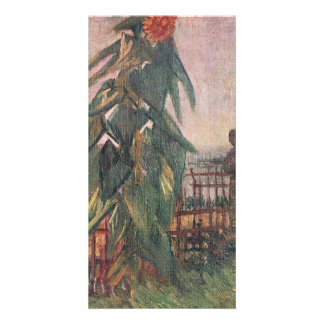 Garden with Sunflower and a girl by van Gogh Photo Cards