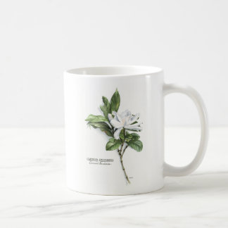 Gardenia Jasminoides (Common Gardenia) Coffee Mug