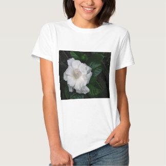 Gardenia Print Tshirt Short sleeve