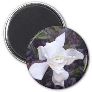 Gardenia tints 6 cm round magnet