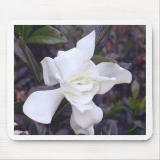 Gardenia tints mouse pad