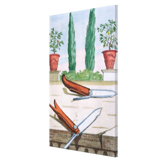 Gardening Knife, from 'Hesperides' by Giovanni Bat Canvas Print