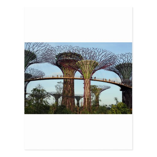 Gardens by the Bay Singapore Supertree Grove Postcards
