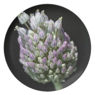 Garlic Bud Melamine Plate