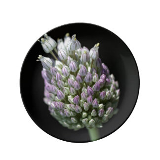 Garlic Bud Small Porcelain Plate