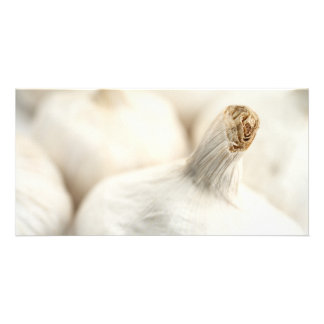 Garlic bulbs photo card template