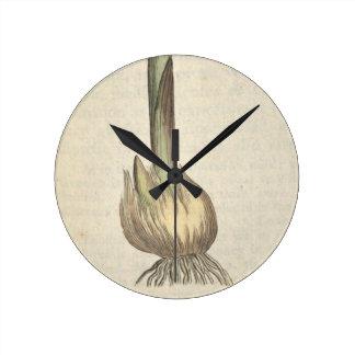 Garlic Round Clock