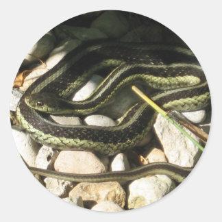 Garter Snake Classic Round Sticker