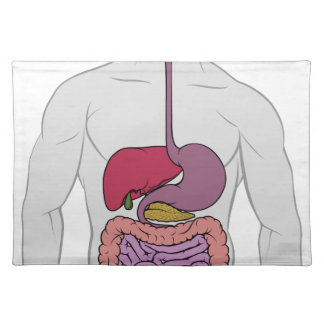 Gastrointestinal Digestive Tract Anatomy Diagram Placemat