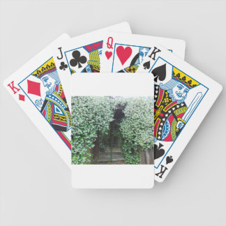 Gate Covered in Jasmine Bicycle Playing Cards