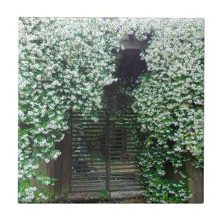 Gate Covered in Jasmine Ceramic Tile