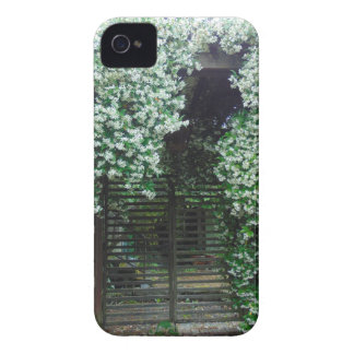 Gate Covered in Jasmine iPhone 4 Cases