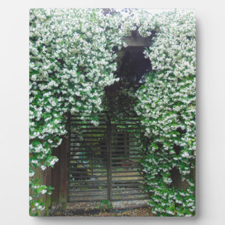 Gate Covered in Jasmine Plaque