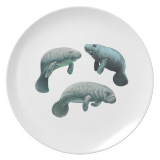 GATHERING OF THREE PLATE