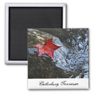 Gatlinburg Leaf Magnet