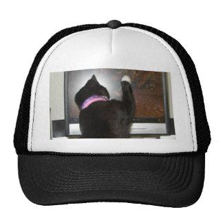Gato the Killer Hat