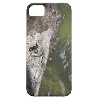 gator case for the iPhone 5