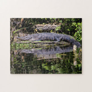 Gator on the Silver River Jigsaw Puzzle