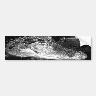Gator Sticker Bumper Sticker
