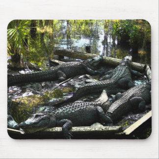 Gators Mouse Pad