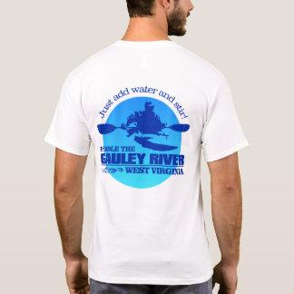 Gauley River (Blue) T-Shirt