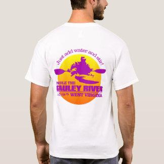 Gauley River (Sunset) T-Shirt