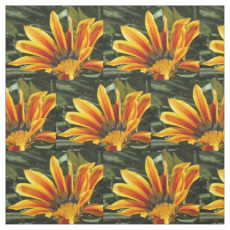 Gazania Bloom Fabric