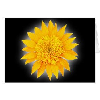Gazania Blossom Card